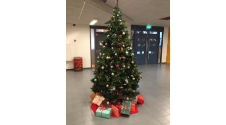 kerstboom-2019.jpg